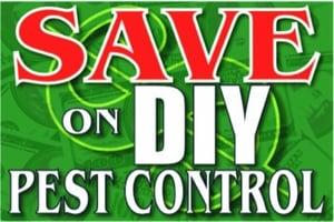 Can I Save Money Doing Pest Control Myself? – Pest Insider